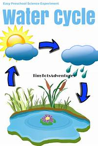 Easy Preschool Science Experiment Water Cycle