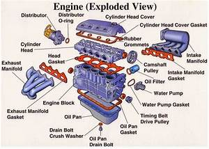 Engine Parts  Exploded View