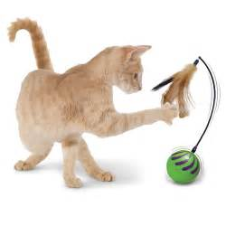 cat toys the random motion cat hammacher schlemmer