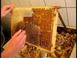 Warum Machen Bienen Honig : seminarfach kreativteil honigernte wie kommt der honig von der wabe ins glas youtube ~ Whattoseeinmadrid.com Haus und Dekorationen