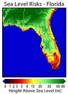 Florida Topographic Map - Hot Girls Wallpaper