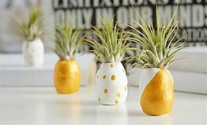 Ananas Kostüm Selber Machen : mini ananas selber machen m max blog ~ Frokenaadalensverden.com Haus und Dekorationen