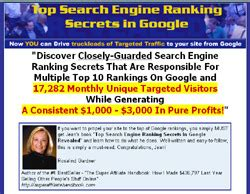 Top Search Engine Ranking by Top Search Engine Ranking Secrets In Revealed