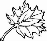 Coloring Leaves Flower Pages Print sketch template
