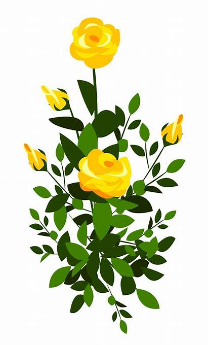 Yellow Rose Clipart Roses Bush Flowers Clip