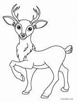 Deer Coloring Cartoon Printable Cool2bkids sketch template