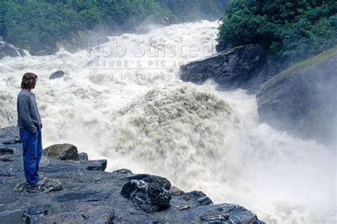 raging haast river  flood   gates  haast