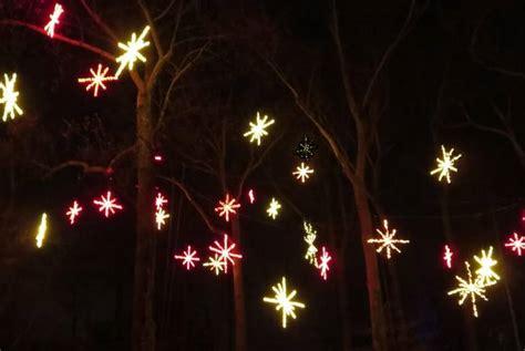 garden of lights san diego botanic garden 125 000