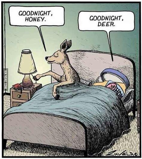good night honey good night deer dumb jokes pinterest