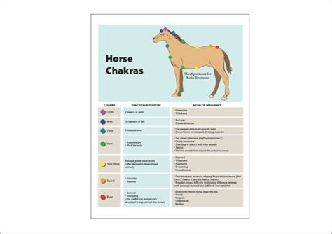 Printable Chart Poster On Equine Horse Chakras Functions