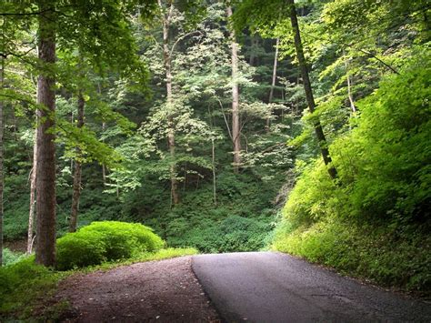 nature summer mountain road picture nr