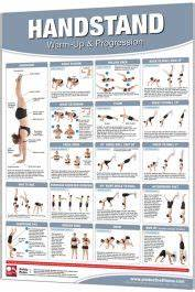 weight exercise chart productive fitness 24 quot x 36 quot laminated fitness poster