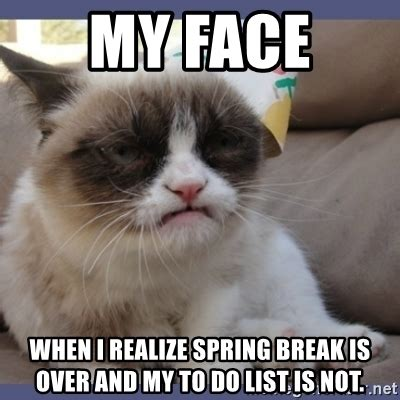 Spring Break Over Meme - my face when i realize spring break is over and my to do list is not birthday grumpy cat