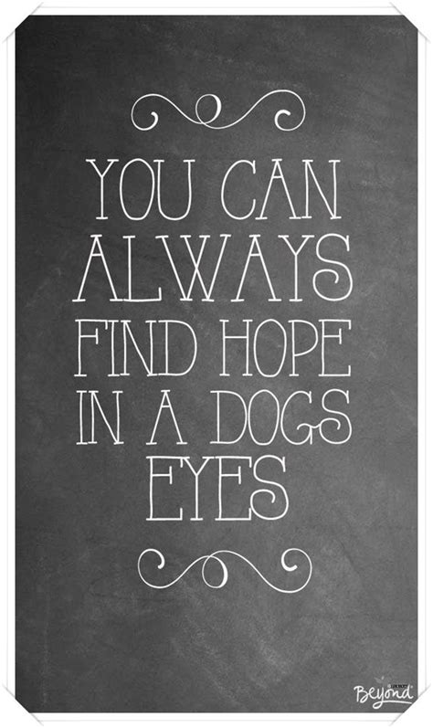 Dog Eye Quotes. QuotesGram