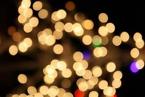 Lights Christmas Resume Format Download Pdf White