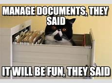 Manage Documents, They Said Cat In File Cabinet meme on