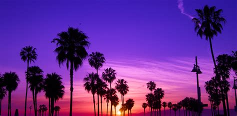 ridiculously funny   overhears  los angeles