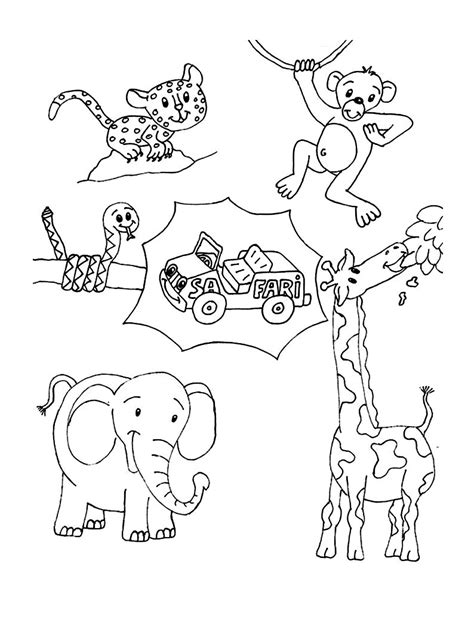 wild animal coloring pages best coloring pages for kids
