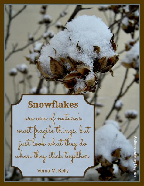 Snowflakes  A Week At A Glance 126  An Extraordinary Day. Humor Jokes Quotes. Boyfriend Quotes For Insta. Motivational Quotes Wallpapers Zip. Positive Quotes Job. Sad Quotes We Heart It. Morning Quotes Morning Quotes. Winnie The Pooh Quotes Morning. Winnie The Pooh Quotes Teacher