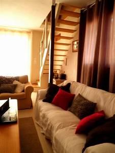 salon chic et nature (photo 3/4) décoration nature avec coussin vieux rose pour