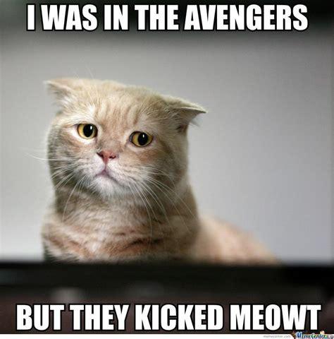 Sad Cat Meme - sad cat is sad by heavy meme center