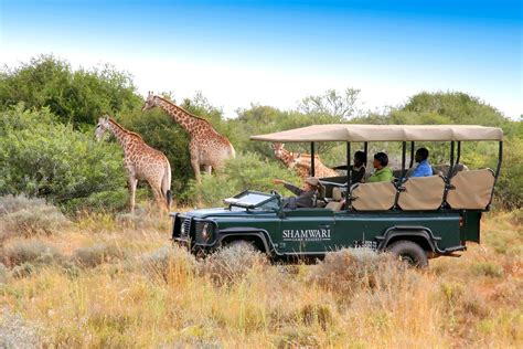 South Africa Cities And Safari Adventure