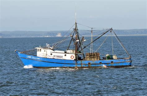 Fishing Vessel Merchandise Sinks by Commercial Fishing Vessel Sinks At Westport Marina South