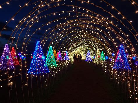 look magical field of lights in nuvali is the perfect