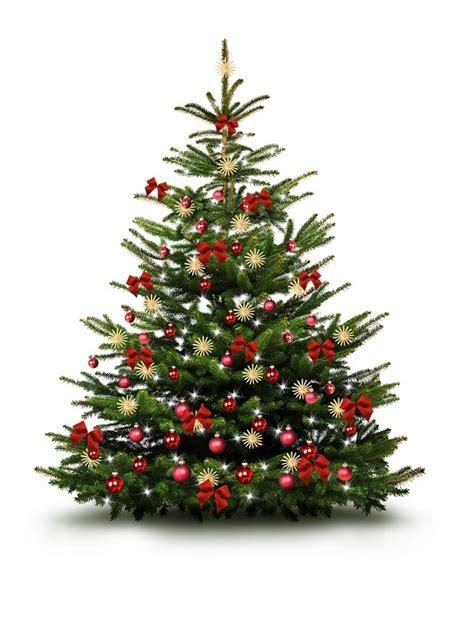 weihnachtsbaum schm 252 cken so wird weihnachten prunkvoll