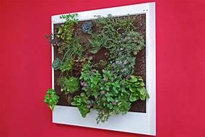 Pflanzen Zur Luftbefeuchtung : 941 kb ~ Sanjose-hotels-ca.com Haus und Dekorationen