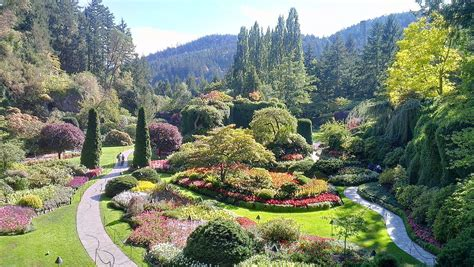 Garden Picture by Butchart Gardens