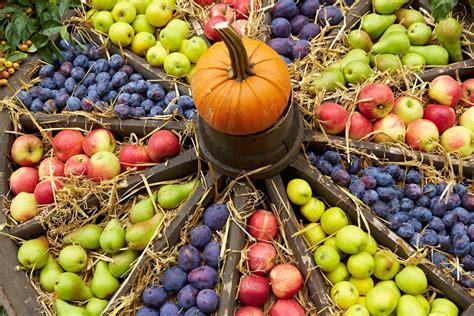 Pflanzen Im Oktober by Gartenarbeit Im Oktober Das Ist Jetzt Wichtig