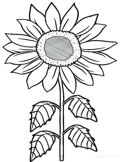 Sunflower Coloring Pages For Adults at GetColorings com