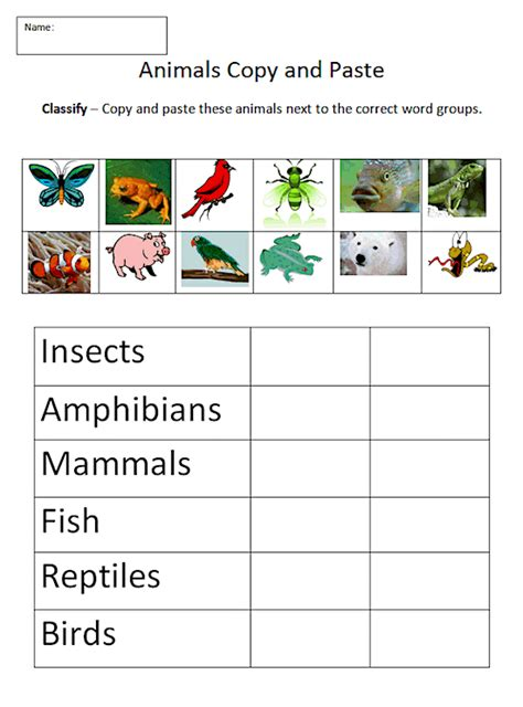 animal classification worksheet intermediate tech