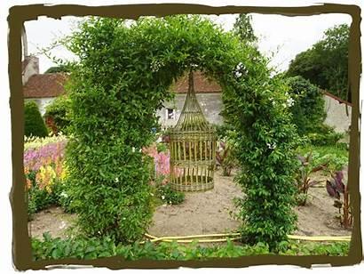 Garden Fancy Veggie Potager