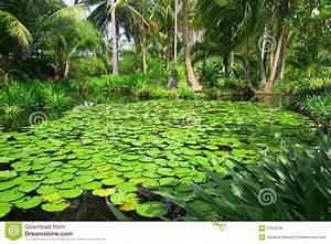 Beautiful green garden stock photo. Image of decorated ...