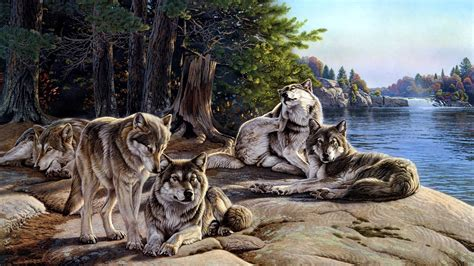 30 Wolf Backgrounds, Wallpapers, Images, Pictures