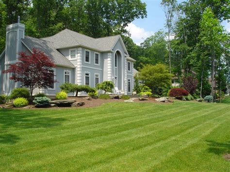pictures of yards front yard and backyard formal natural or contemporary landscaping and garden designs hickory