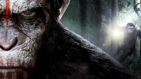war   planet   apes wallpaper