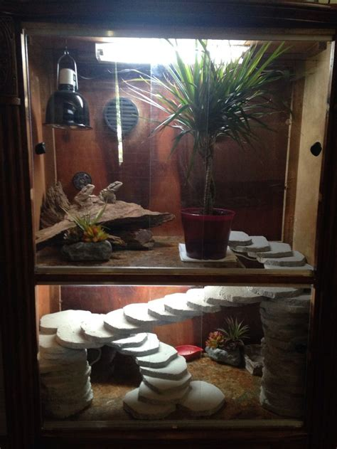 lighting for bearded dragon vivarium my bearded dragon cage made from a broken dresser