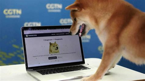 Explore dogecoin network by looking for all the accessible nodes, their countries, implementations, versions and consensus rules 대세는 멍멍?…도지코인 인기에 유사 코인들도 관심 | 연합뉴스