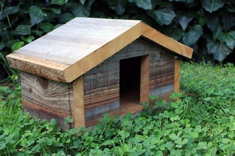dove bird house plans woodworking plans  dimensions