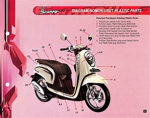 Kampus Parts  Katalog Warna Honda Scoopy Fi  2014