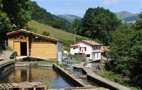 Truite De Banka Producteur Pyrénées Atlantiques