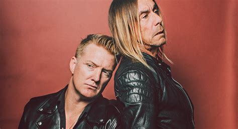 iggy pop  josh homme release post pop depression