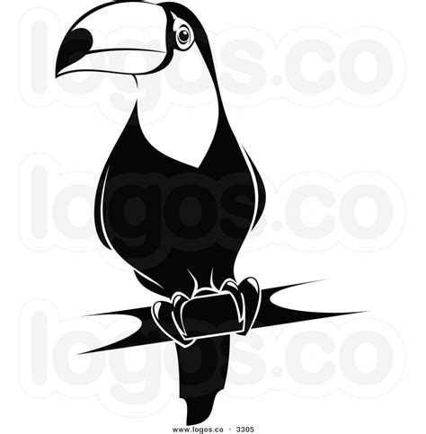 toucan clipart black and white toucan clipart black and white clipart panda free