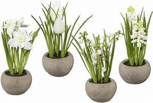 Was Sind Frühlingsblumen : fr hlingsblumen im zementtopf 4er set kaufen otto ~ Whattoseeinmadrid.com Haus und Dekorationen