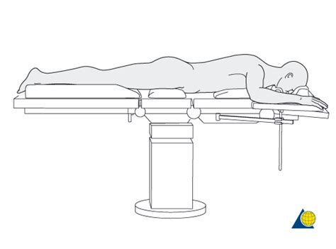 Prone Position Images Pin Standard Supine Position On