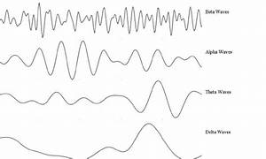6  The Brainwaves In Delta  Theta  Alpha And Beta Bands