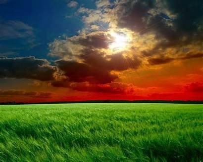 Sunset Backgrounds 1024 1280 Desktop Fields Pixelstalk